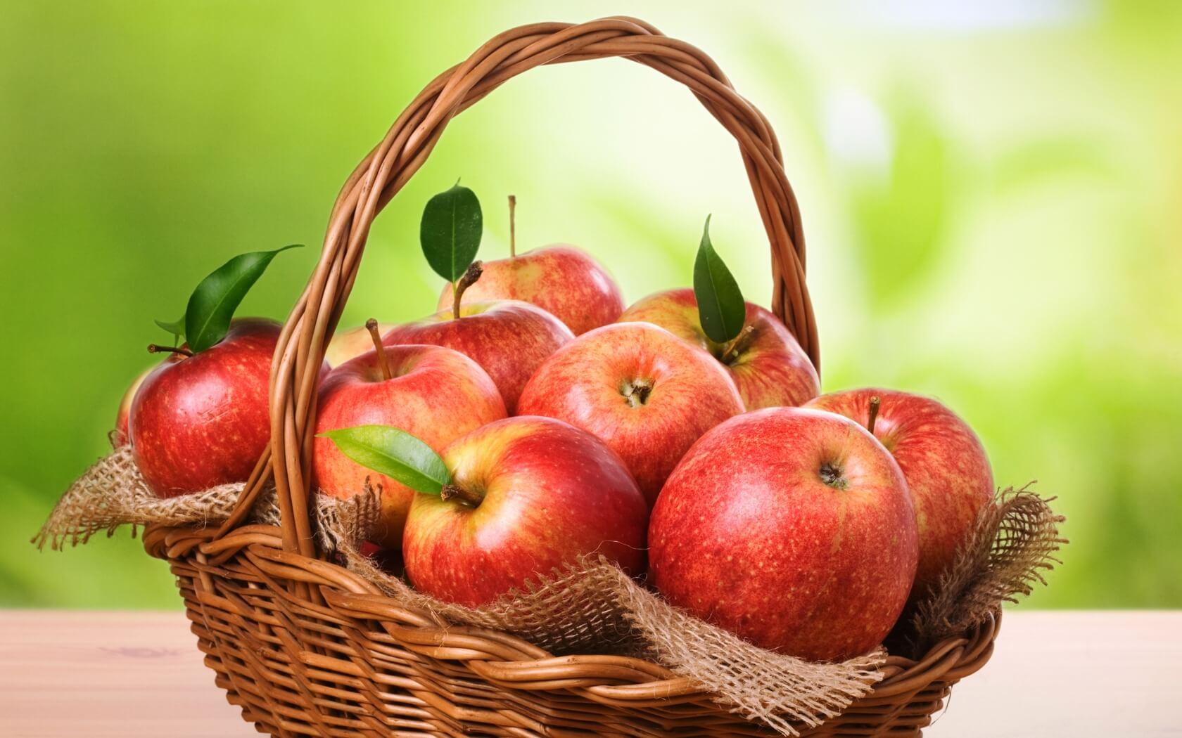ვაშლი სიცოცხლეს ახანგრძლივებს