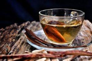 ჩაის სოკოს ანტიბაქტერიული თვისებები