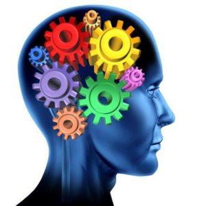 ვარჯიშები ტვინისთვის
