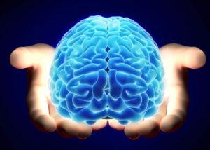 ტვინი უნიკალური ორგანოა