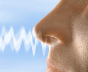 რისი ბრალია ყნოსვის დაქვეითება